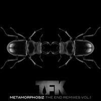 [2012] - Metamorphosiz - The End Remixes Vol. 1 [EP]
